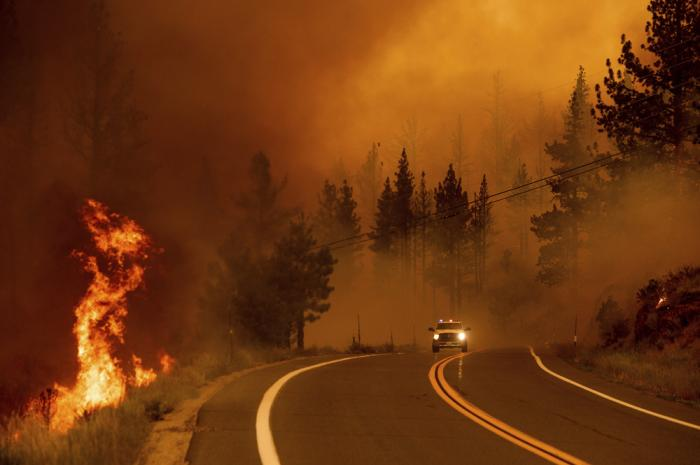 Flames lick at a roadside as the Tamarack Fire burns in the Markleeville community of Alpine County, Calif., on Saturday, July 17, 2021
